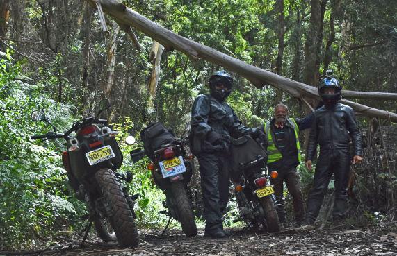 Bowens Creek Road fallen tree bikes Peter Julian Tilmann