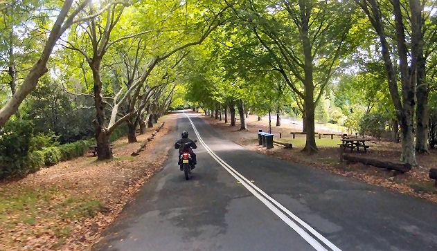 Mt Wilson Road Julian