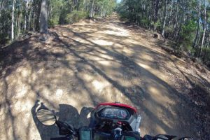 Watagans Forest Road